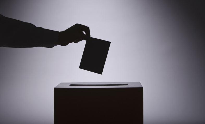 Голосование по изменению Конституции 2020
